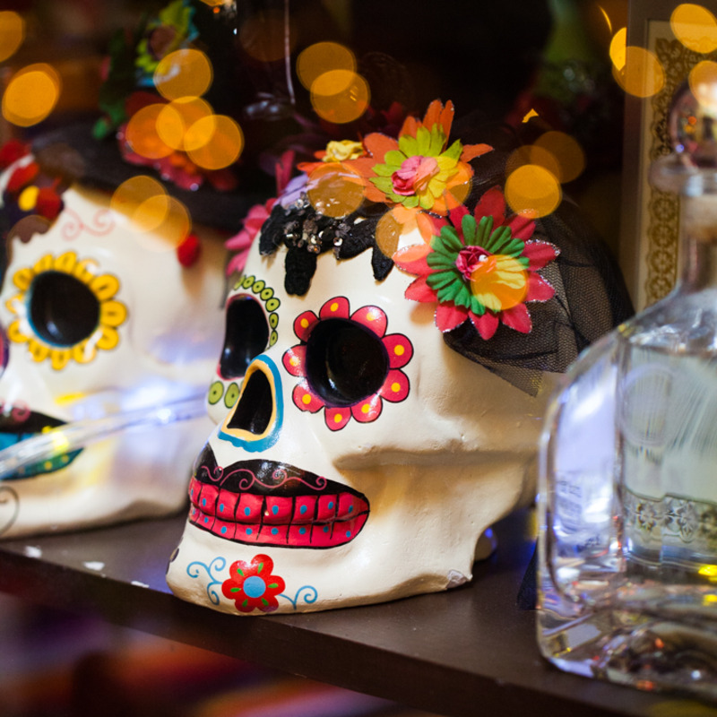 visit our restaurant with beautiful Day of the Dead Decor thru out the walls