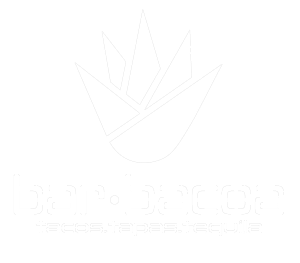 Bar.bacoa logo scroll