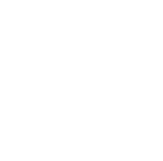 facebook white icon