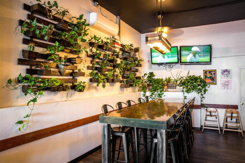 Interior, plant wall decoration