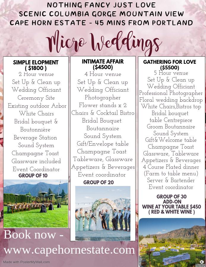 micro wedding flyer