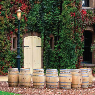 Barrels of wine in front of the cellar