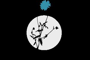 FIORI logo top