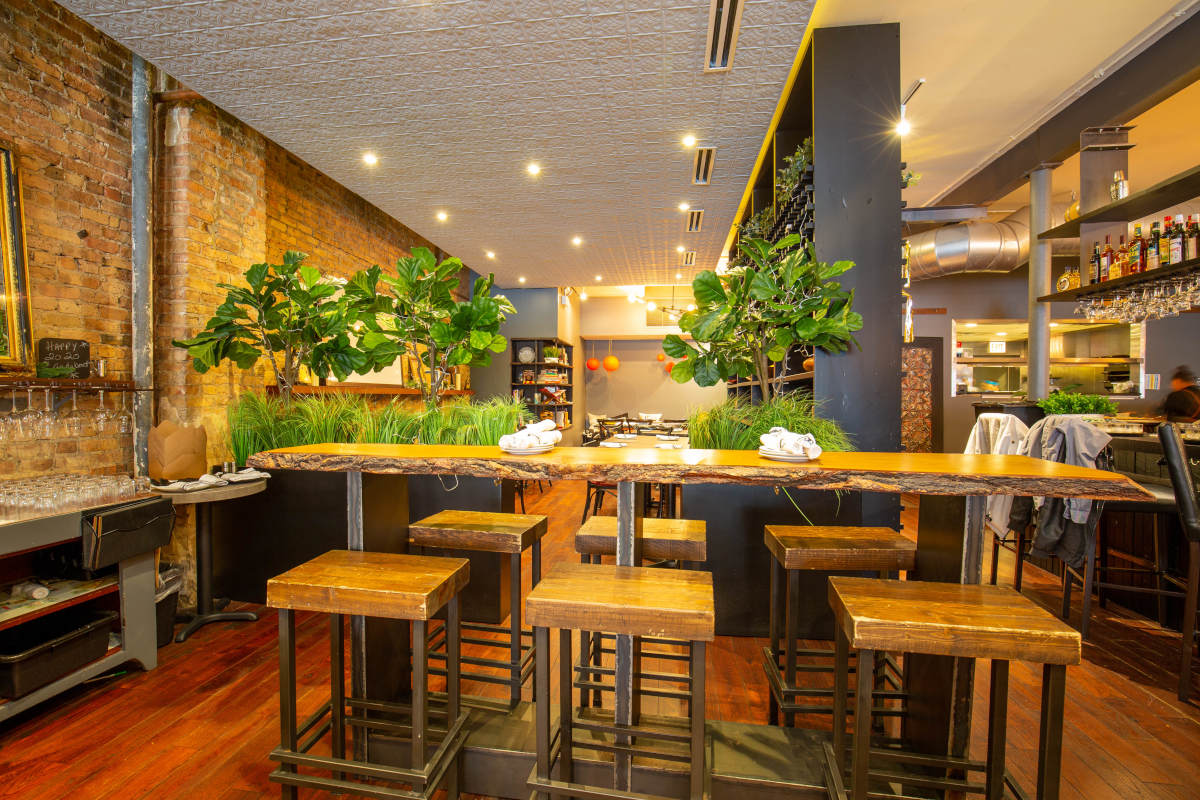interior, standing bar, high chairs, many plants