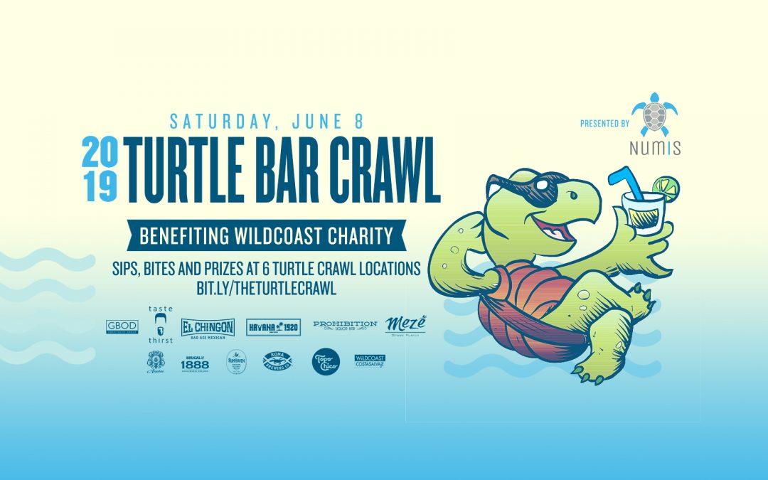 Turtle Bar Crawl photo