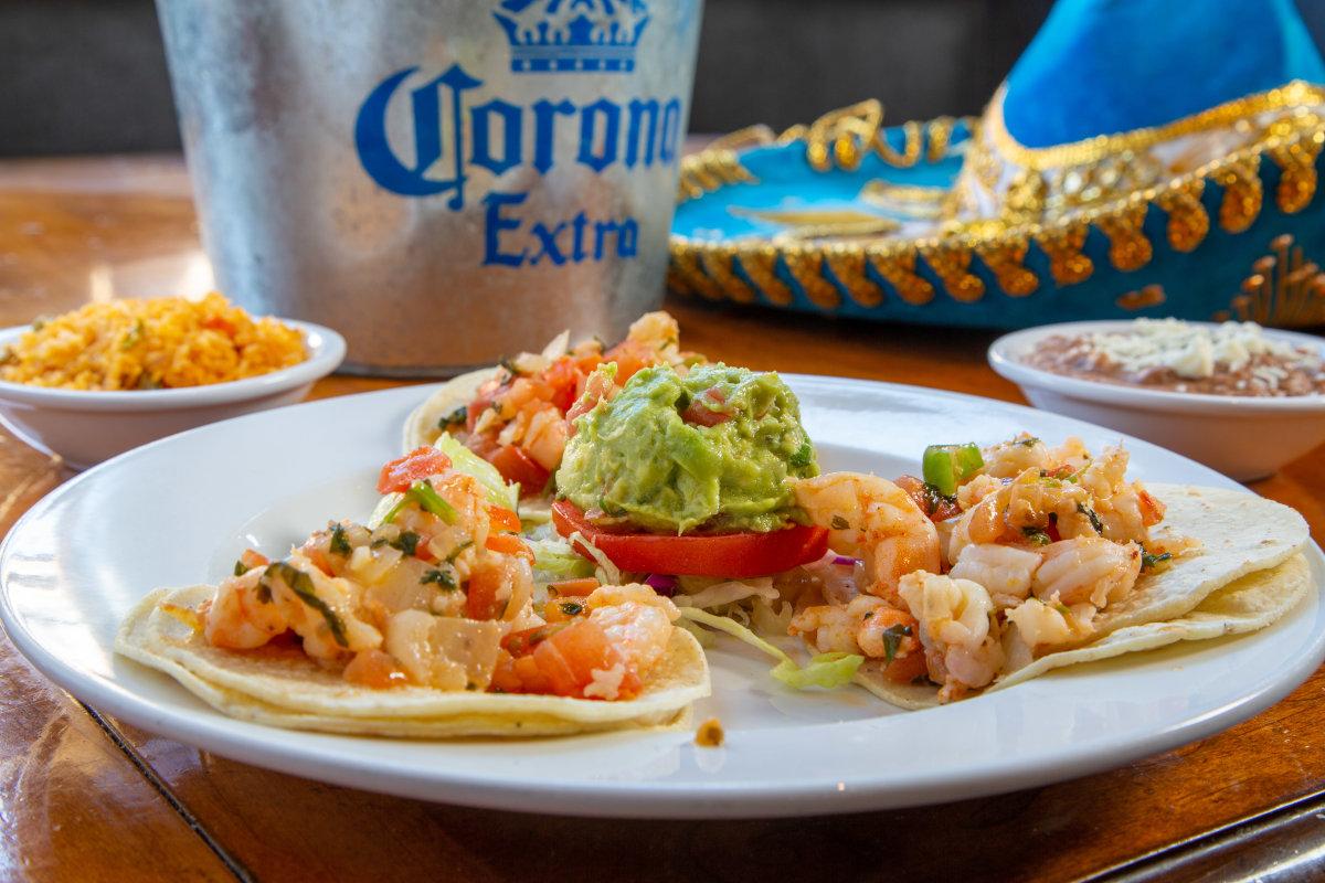 Taco variety plate closeup
