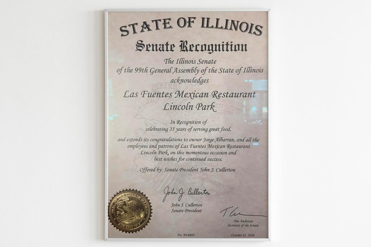 State of Illinois certificate