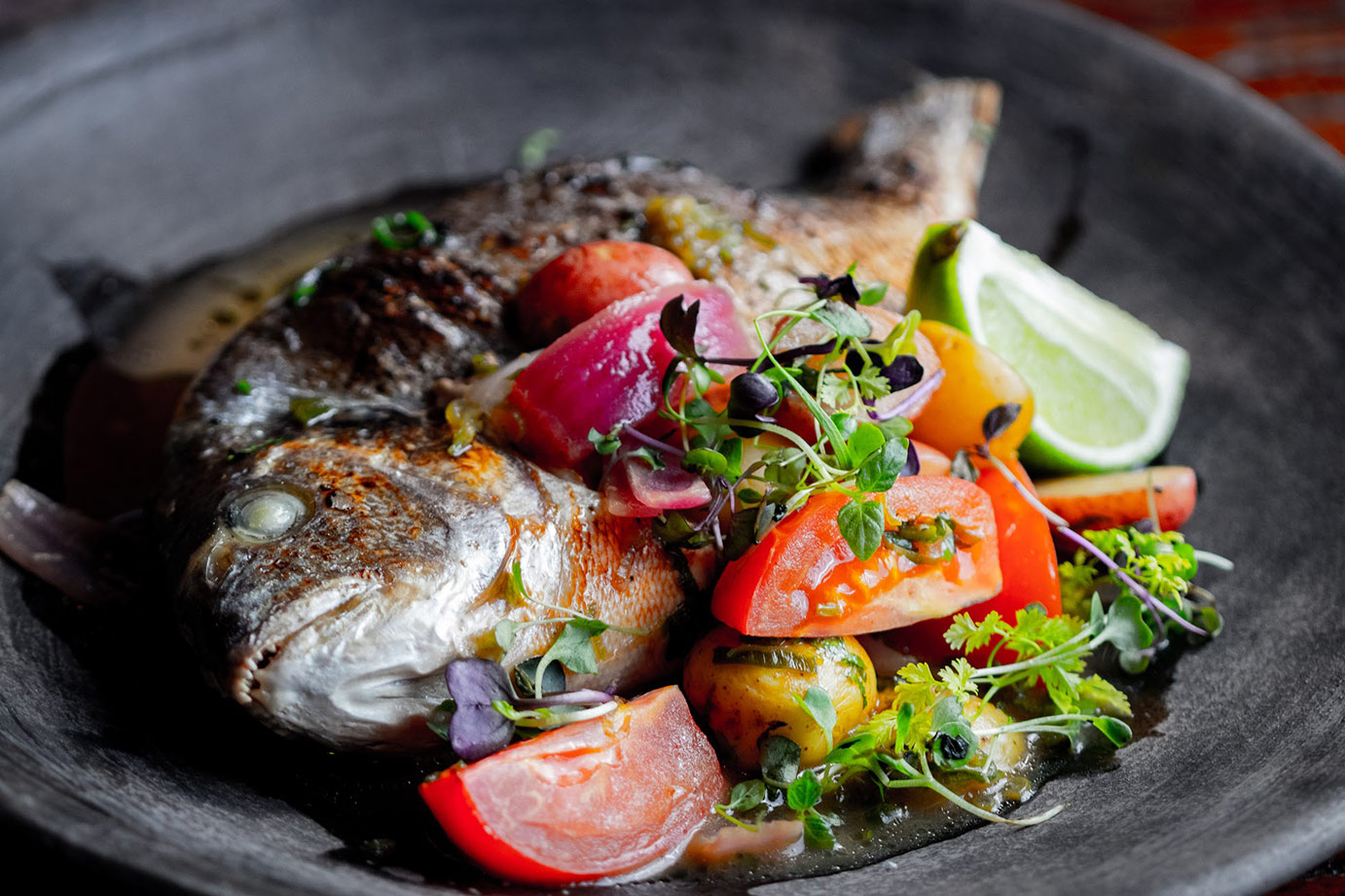 image of fish with a vegetable dish