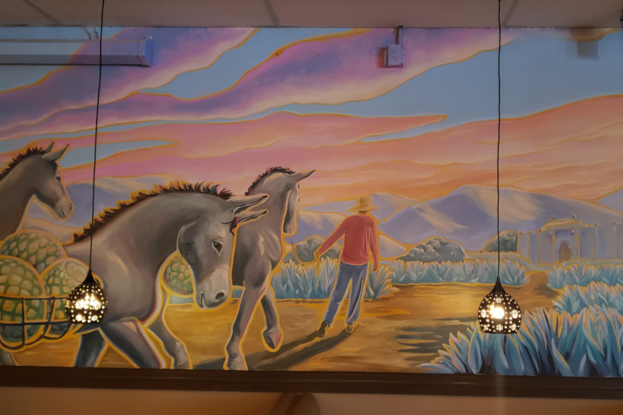 Burro wall decoration