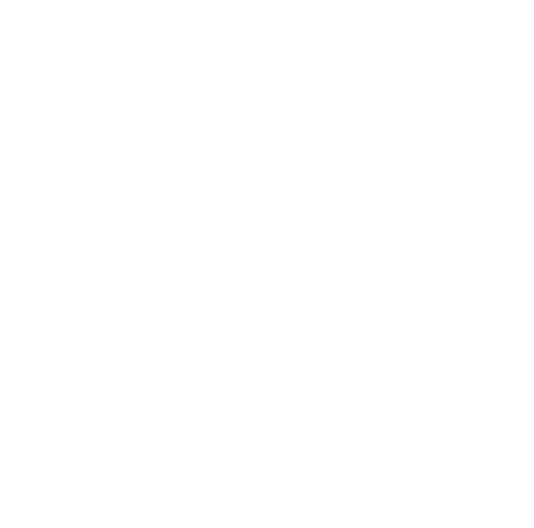 facebook white icon