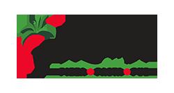 Pizzeria Aroma logo top