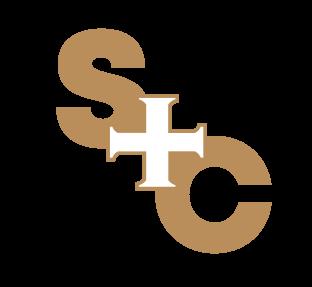 Saints + Council logo top