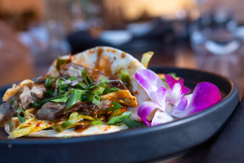 Taco dish, extreme closeup
