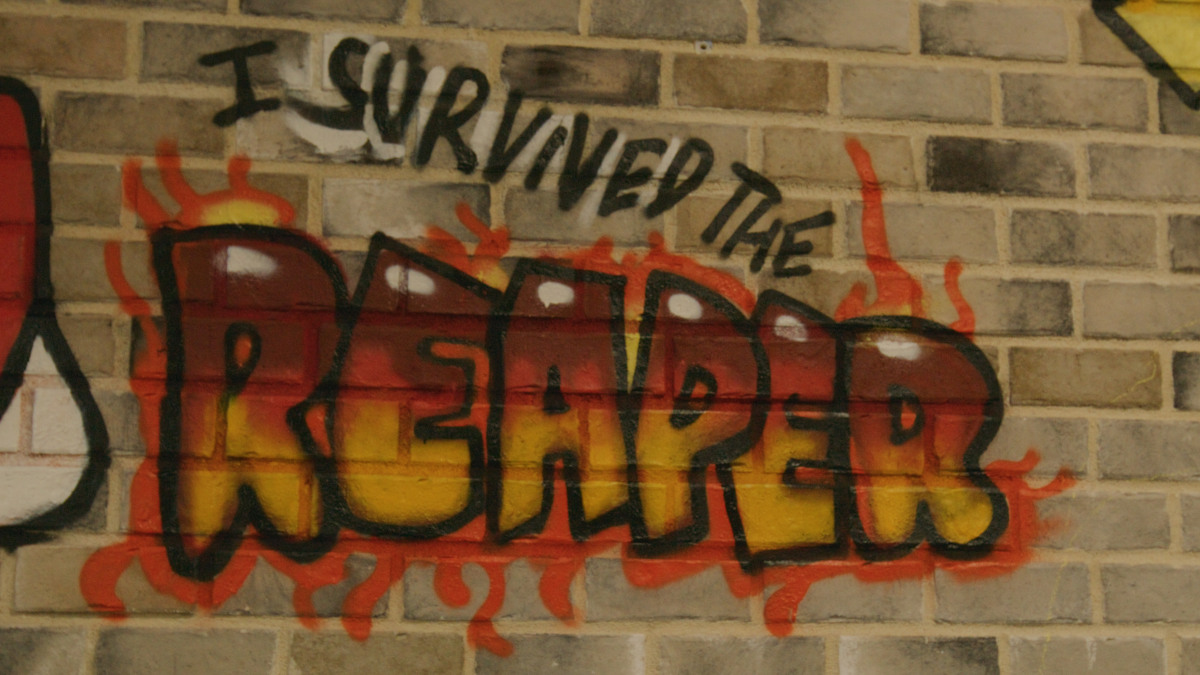 I survived the reaper