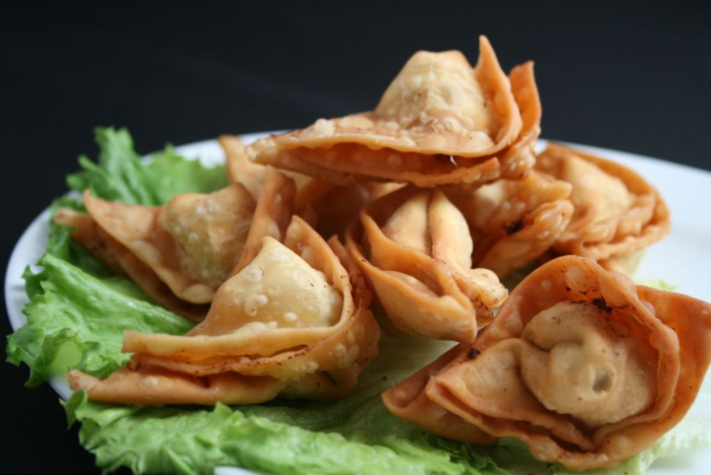 appetizers house wontons