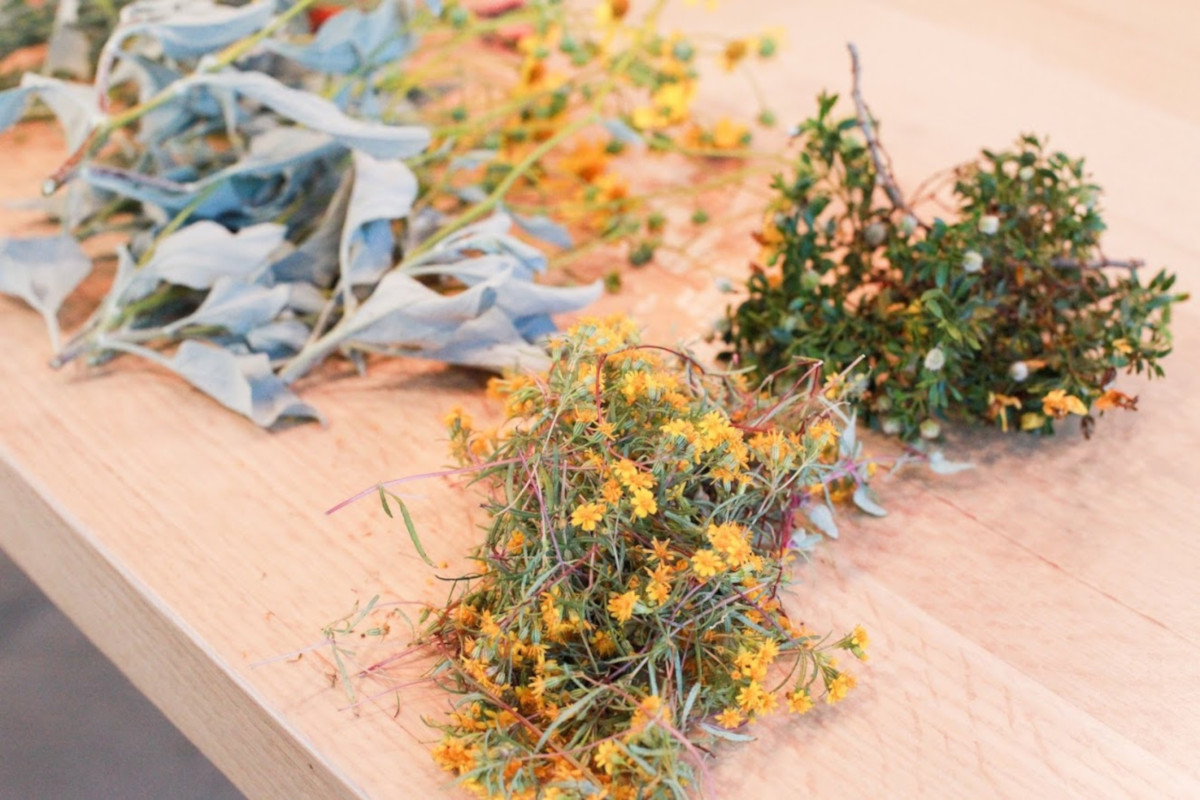Dried herbs on a table