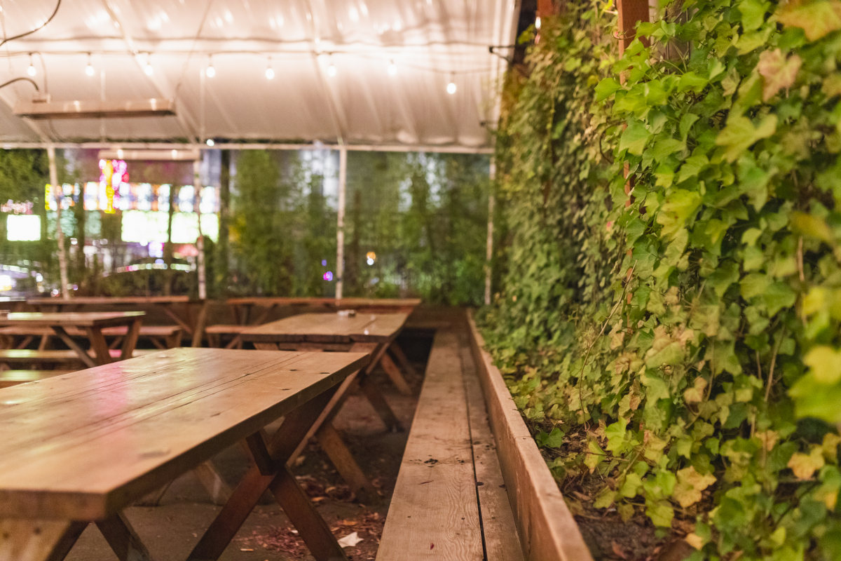 outdoor wooden patio, arround it lot of foliage