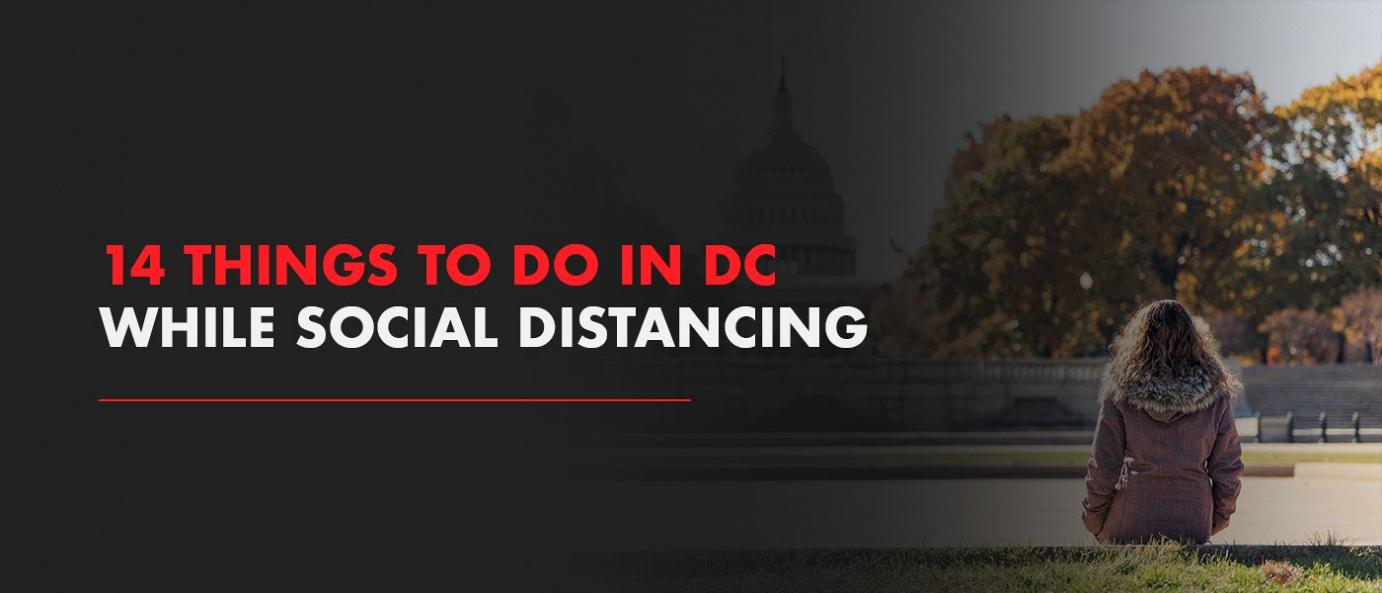 114 Things to Do in DC While Social Distancing blog photo