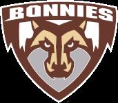 banner logo 3