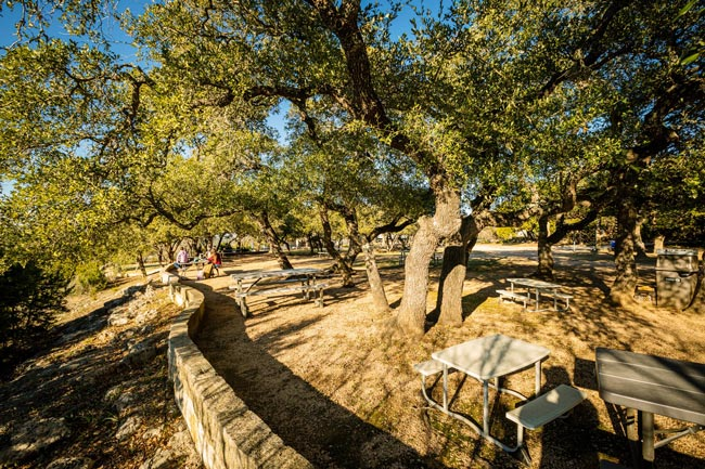 outdoor tables under trees