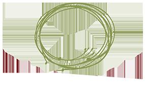 Wild Roots logo top